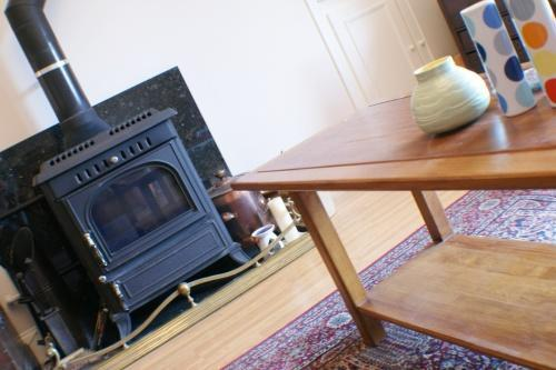 Lounge: Solid Fuel Stove