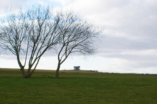 Country Park Setting