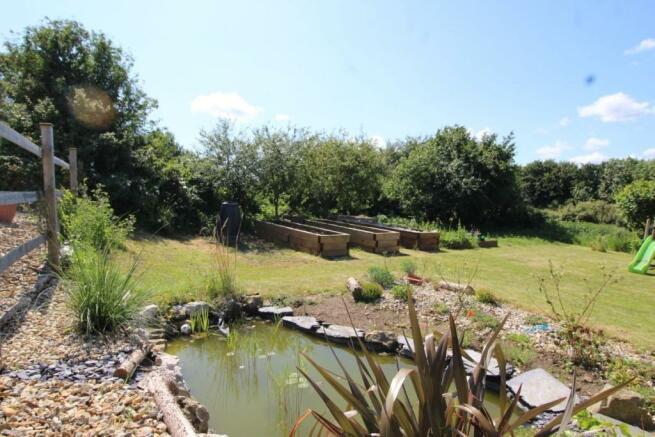Rear Garden Pond Area