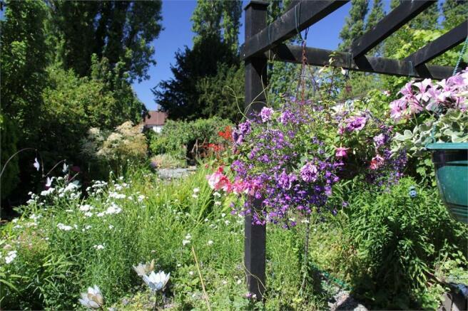 Summer Garden Pictu