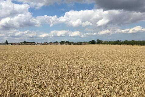Land To Rent in East Midlands - Rightmove