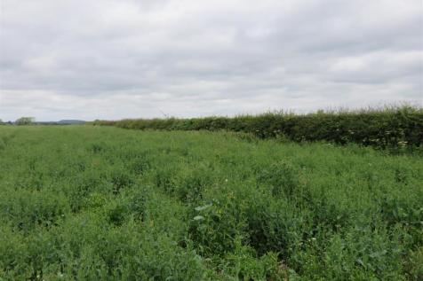 Land To Rent In Leicestershire Rightmove
