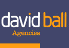 David Ball Agencies, Newquay Logo