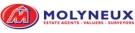 Molyneux, Shotton Logo