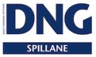 DNG Spillane, Youghal Logo