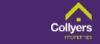 Collyers, Kingsbridge