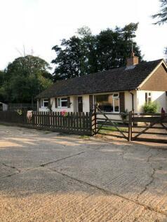 Bradley Road, Burrough Green, Newmarket. 4 bedroom detached house for sale
