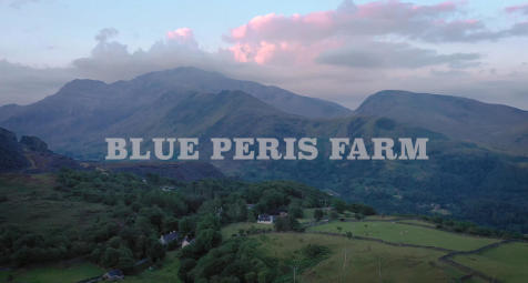 Blue Peris Farm Dinorwic. Farm land