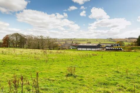 Town Head Farm, West Hall, Brampton, Cumbria. 6 bedroom smallholding for sale