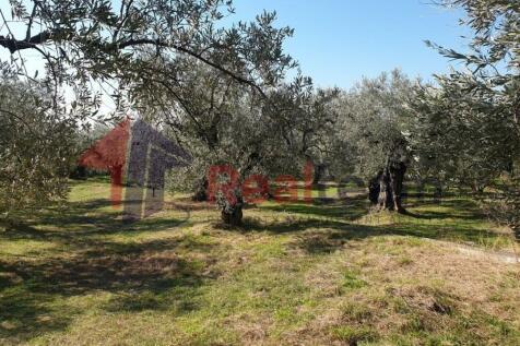 Kato Lechonia, Artemida, Magnisia, Greece. Land for sale