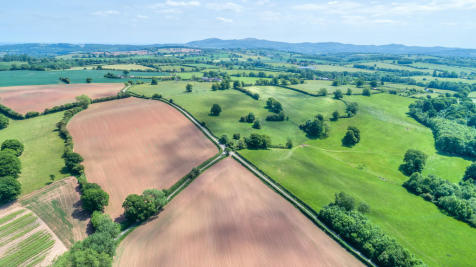 Acton Beauchamp, Worcester, WR6 5AE. Farm land for sale