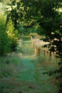 Wonston, Hazelbury Bryan, Sturminster Newton, Dorset. Land for sale