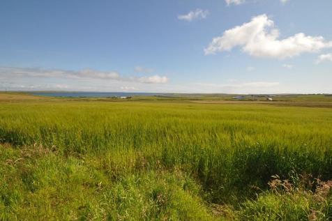 Steading and 29.49ha (72.87 acres) or thereby at Garth, St Ola, KW15 1SS. Farm land for sale