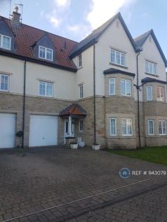 Micklethwaite Grove, Wetherby, LS22. 5 bedroom semi-detached house